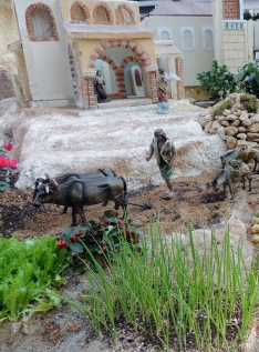 Christmas Crib in Cartagena