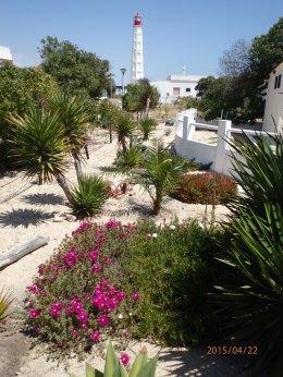 Culatra Lighthouse
