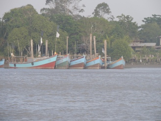Part of the extensive Fishing fleet of Surinam