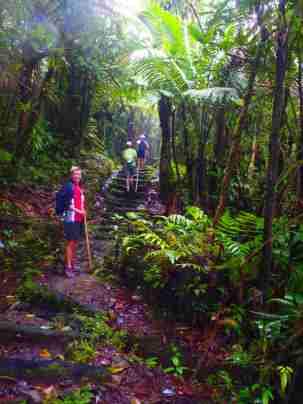 Middleham Falls, Dominica