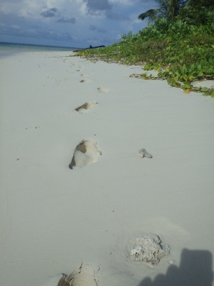 Fantastic soft white sand on a islet south of Telos