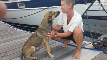Marinans vakthund. Vår kompis