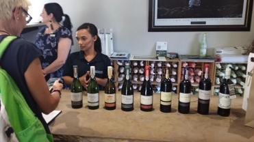 Springfield Wine estate i Robertson distriktet. Ekologiskt vin baserat på fransk tradionellt vindodling